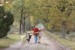 Senioren-Spaziergang